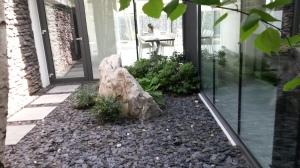 giardini interni greenevolutionudine