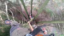 potature alberi ad alto fusto Udine